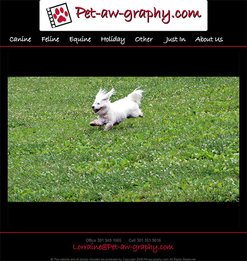 Pet-aw-graphy Site